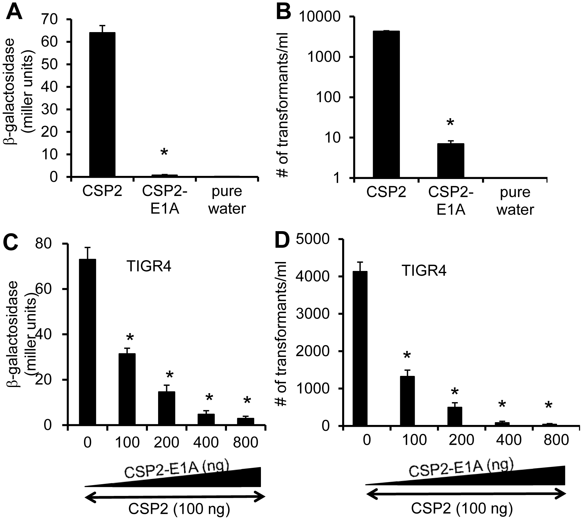CSP2-E1A inhibits competence development and transformation in ComD2 strain TIGR4.
