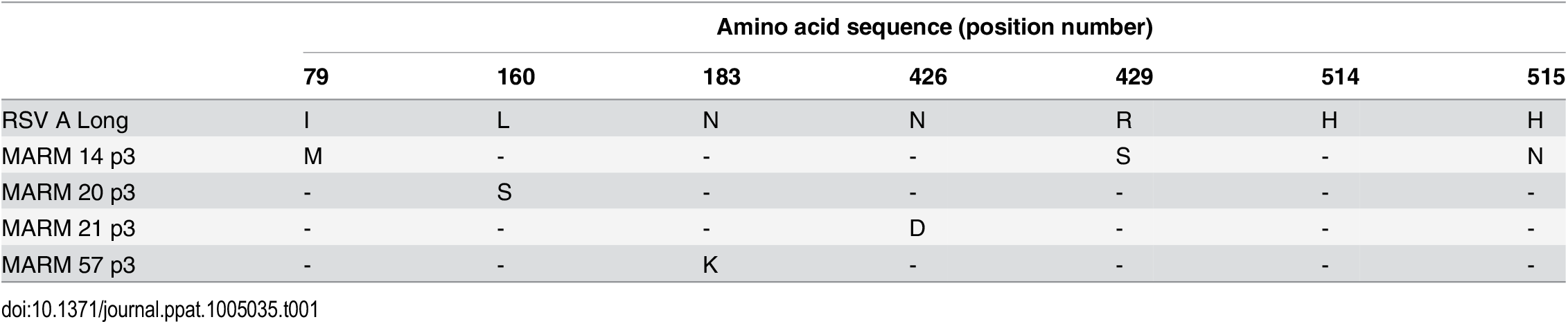 Amino acid changes in F protein of AM14 MARMs.