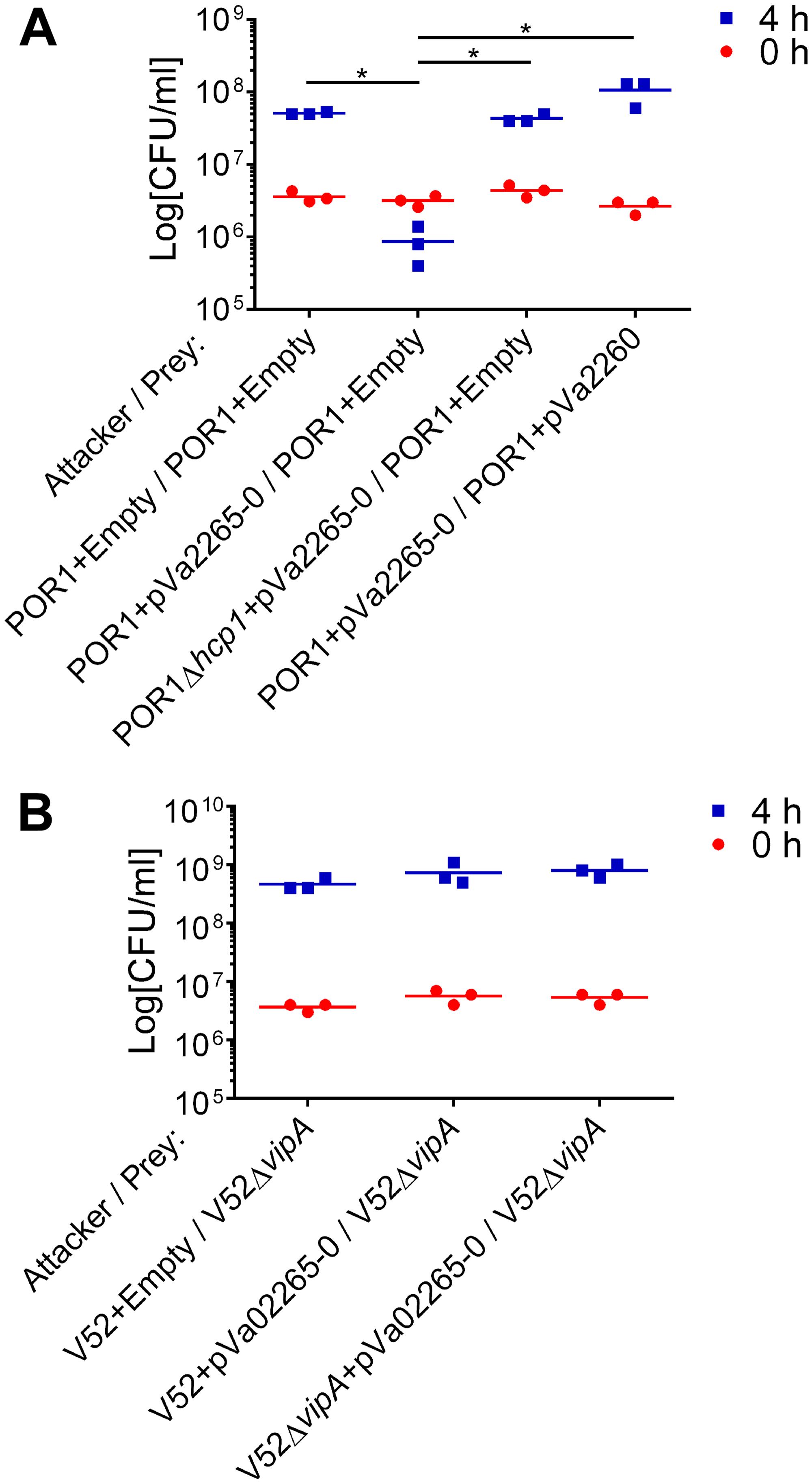 "<i>V</i>. <i>parahaemolyticus</i> T6SS1 can deliver an ""orphan"" <i>V</i>. <i>alginolyticus</i> MIX V-effector."