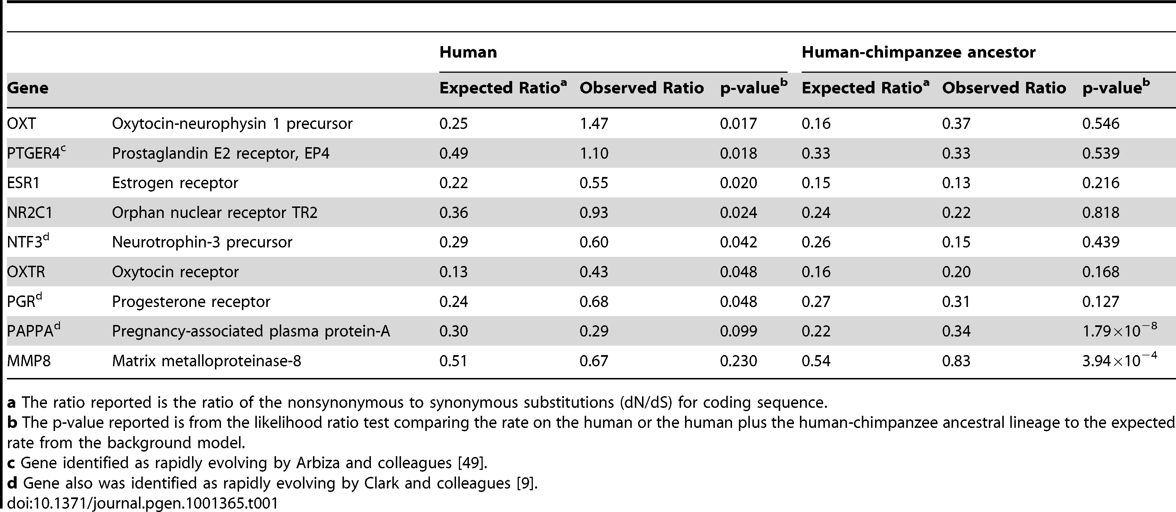 Sample of candidate genes showing coding region rate acceleration in humans.