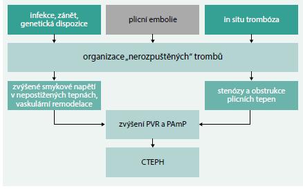 Schéma 1. Současná patofyziologická představa o CTEPH