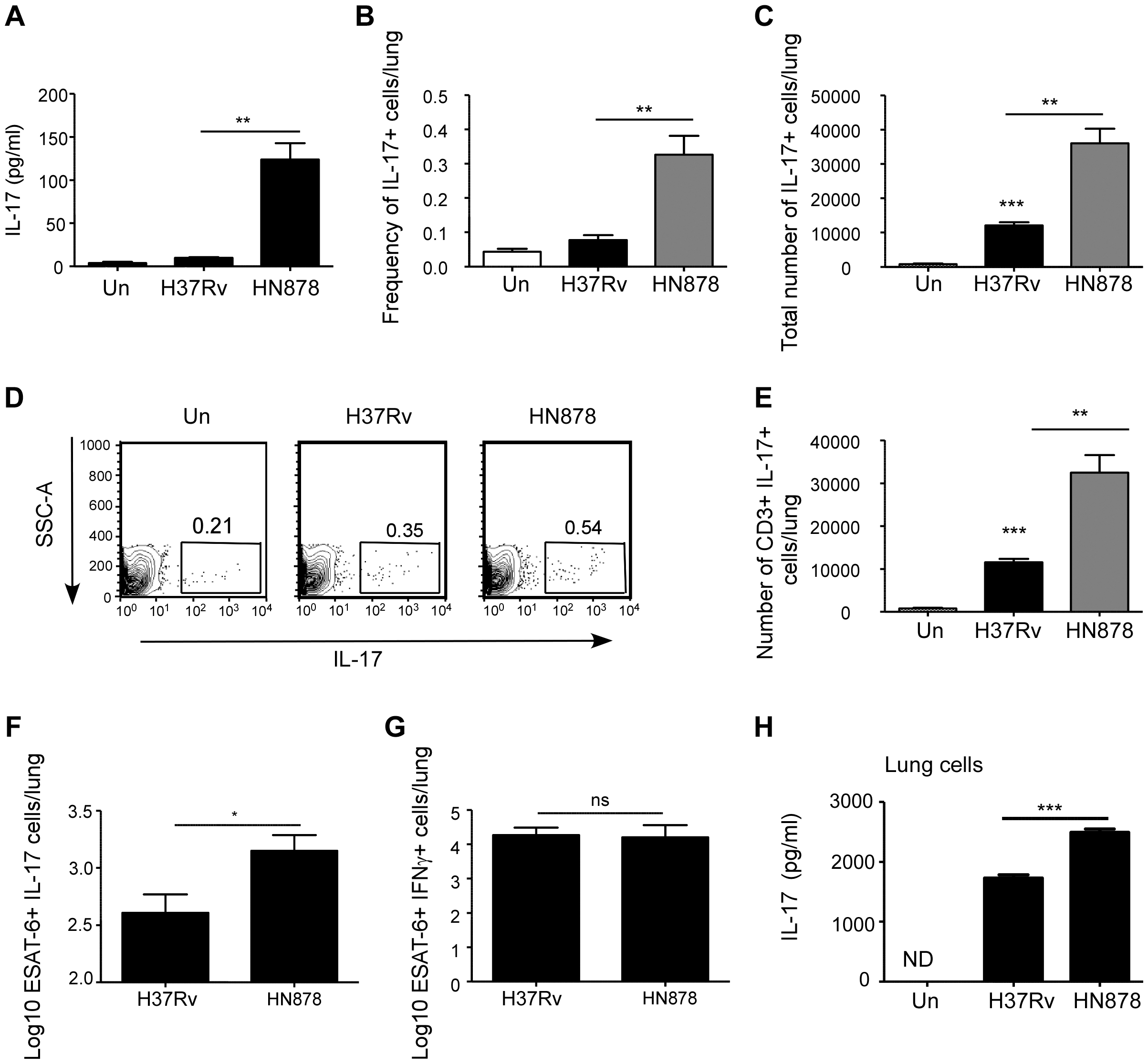 <i>Mtb</i> HN878 induces potent IL-17 responses in infected mice.