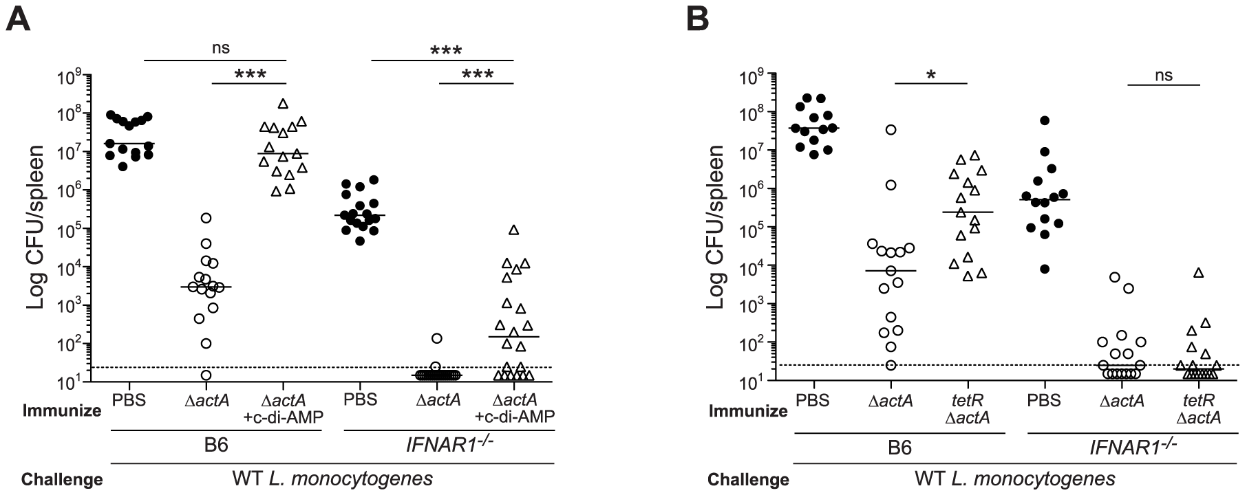 Mice lacking type I IFNs are partially rescued from c-di-AMP-mediated immune inhibition.