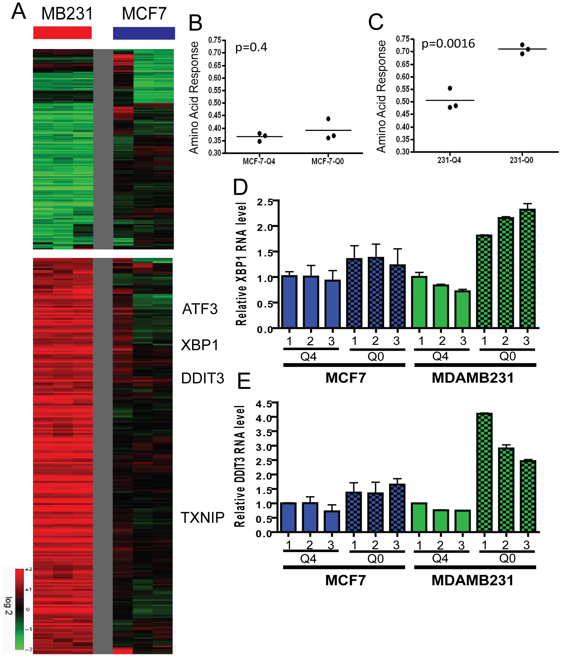 The transcriptional response of breast cancer cell lines to glutamine deprivation.