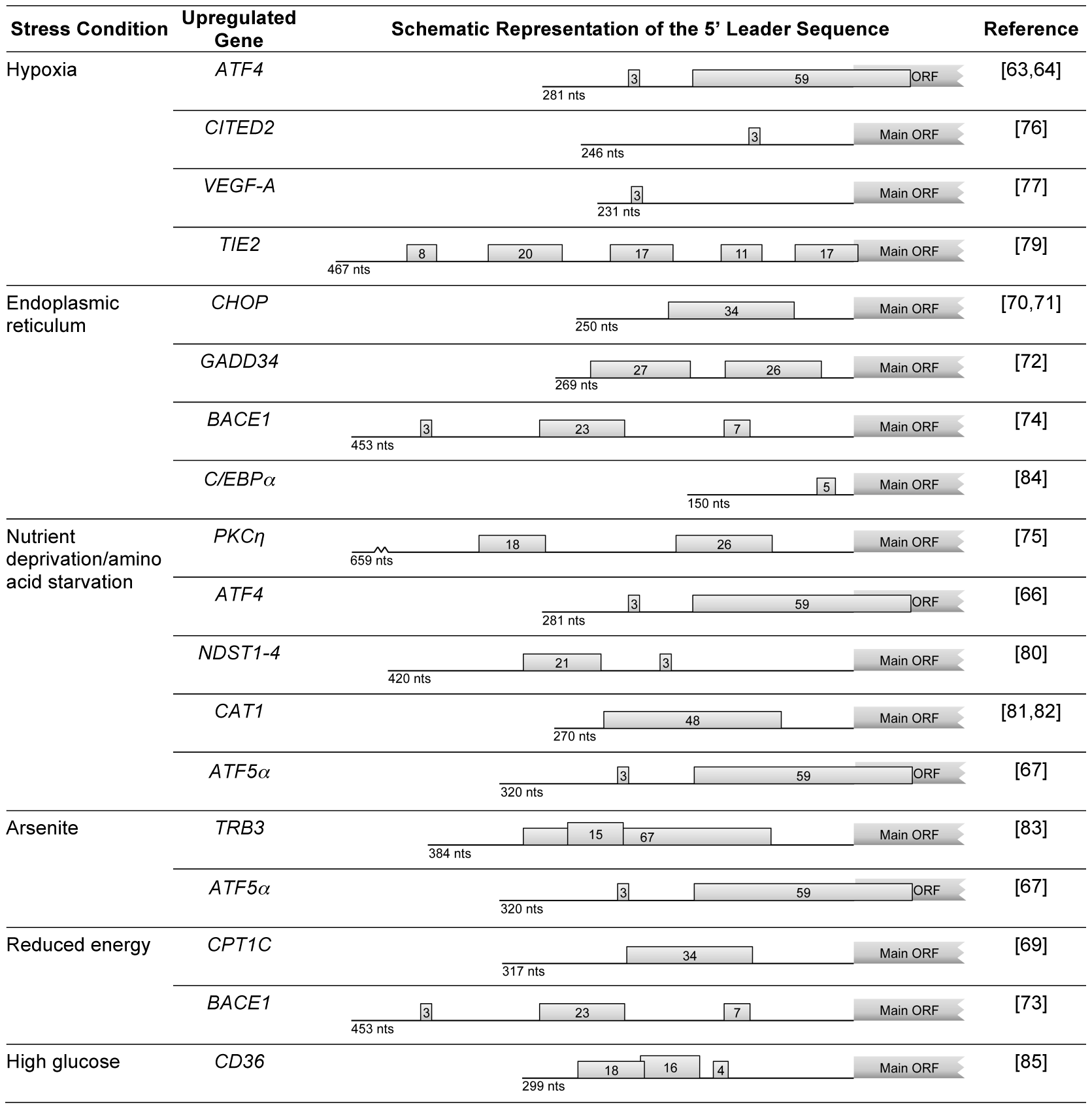Examples of human genes encoding mRNAs that, under stress conditions, evade global repression of translation and are upregulated due to the presence of uORFs.