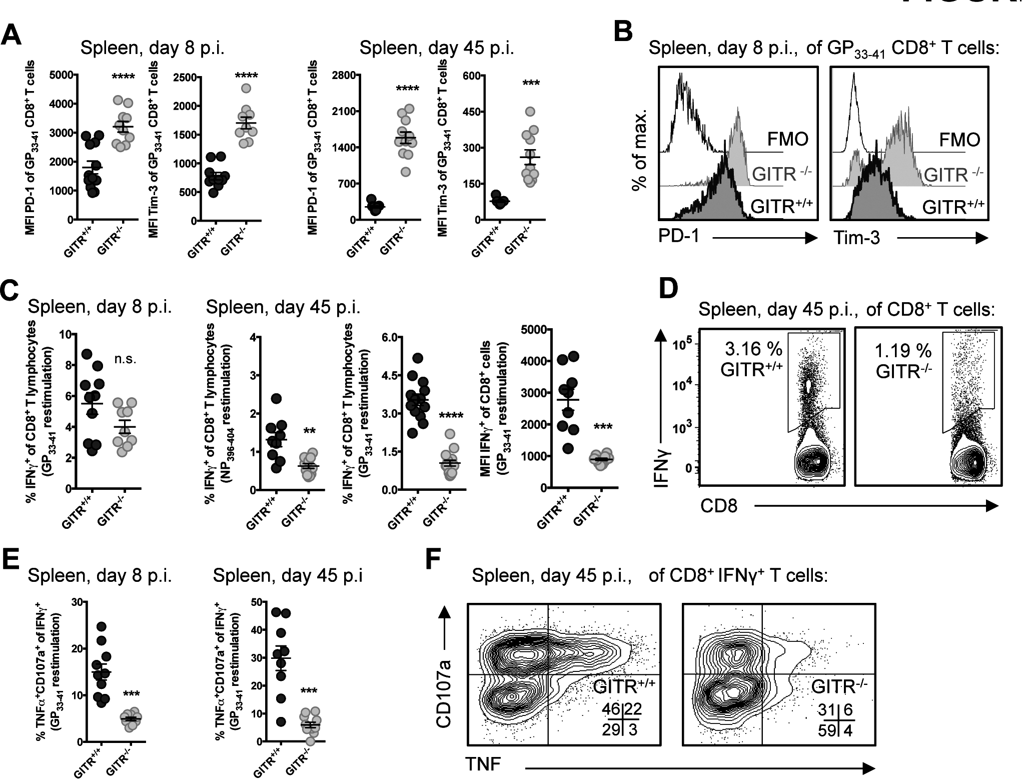 GITR<sup>-/-</sup> LCMV-specific CD8 T cells express higher levels of inhibitory molecules and are more functionally exhausted.