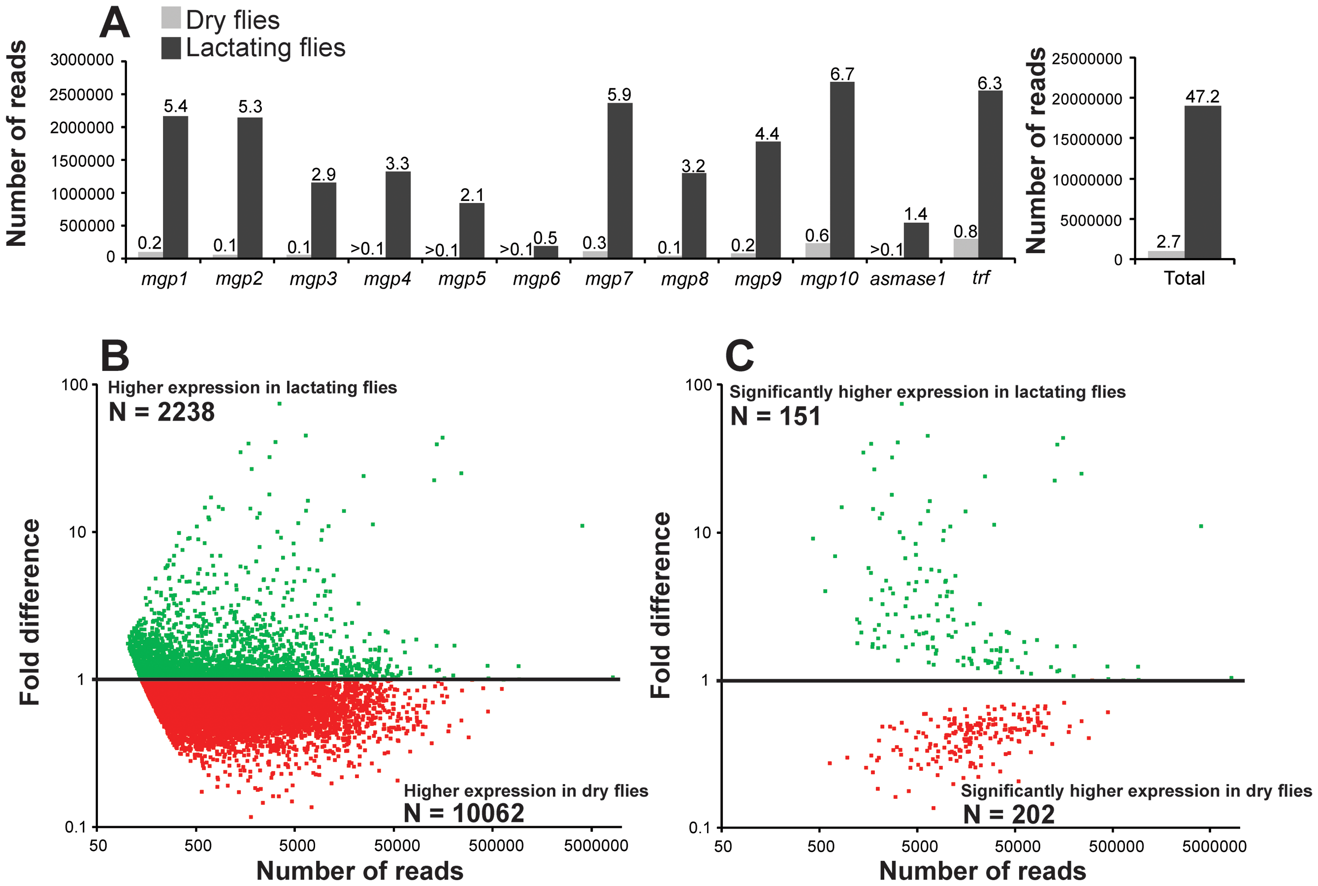 Mapping of reads to lactation-specific genes and fold changes in transcript expression for contigs after removal of lactation-specific genes based on RNA-seq analysis.