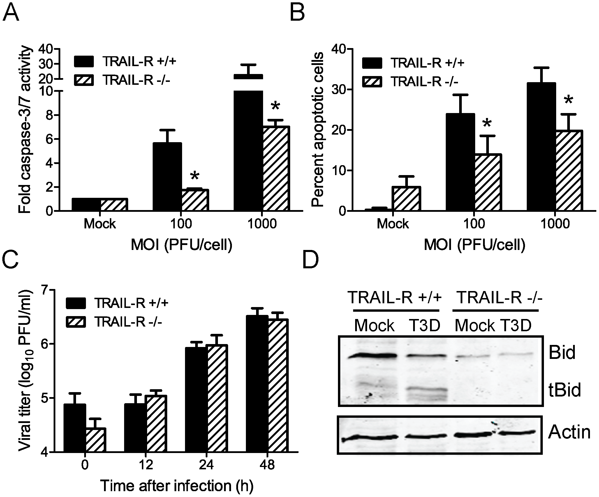 Death signaling via TRAIL-R contributes to Bid cleavage and apoptosis induction following reovirus infection.