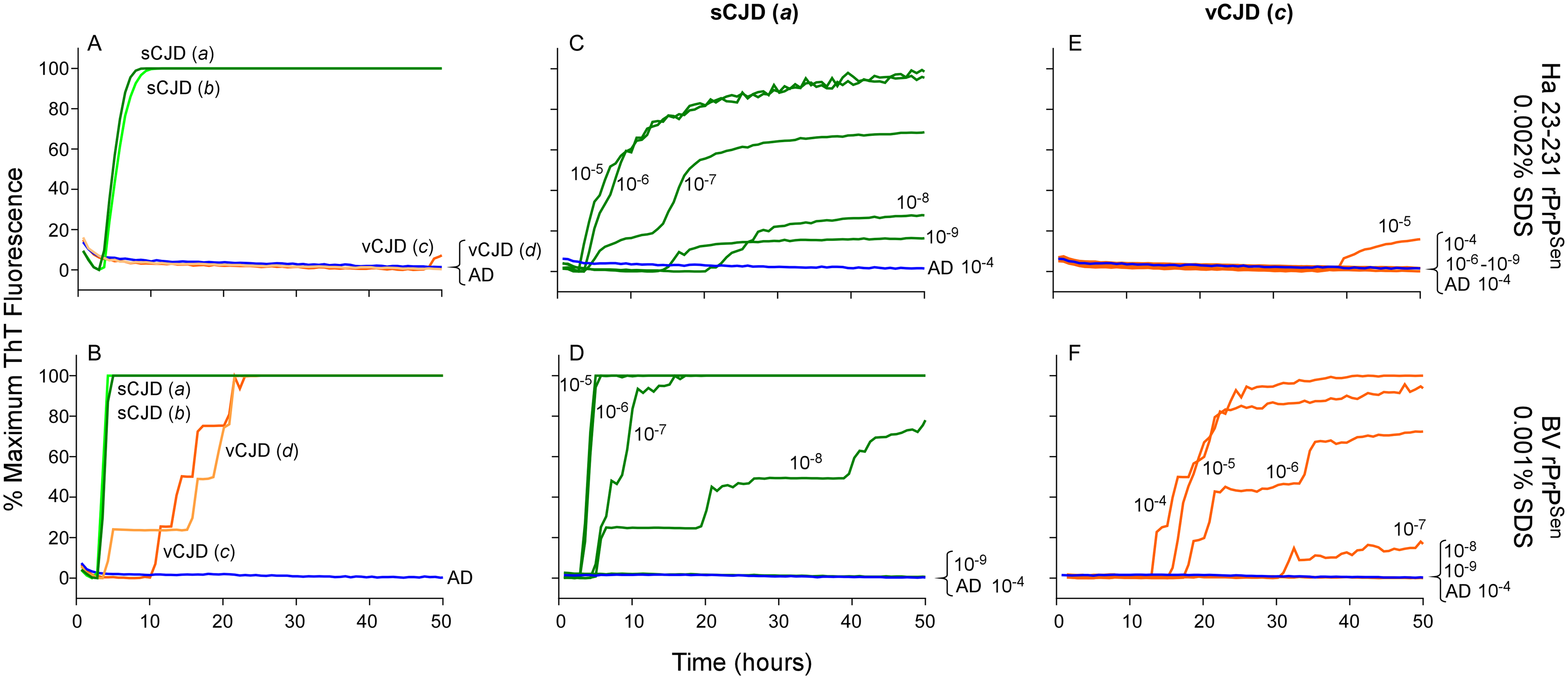 Detection, discrimination and sensitivities for detection of human sCJD and vCJD with hamster 23–231 and BV rPrP<sup>Sen</sup> substrates.