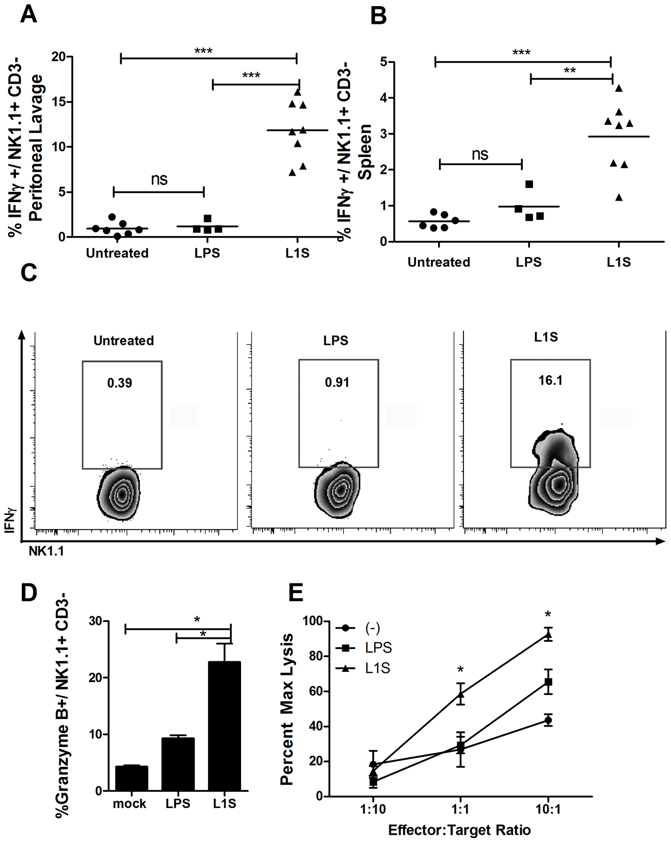 L1S activates NK cells <i>in vivo</i> to secrete IFNγ and increase cytotoxicity.