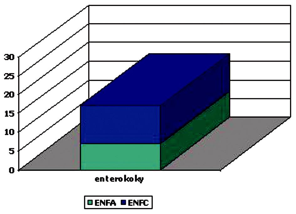 Etiologická agents Graf 4. Etiological agent