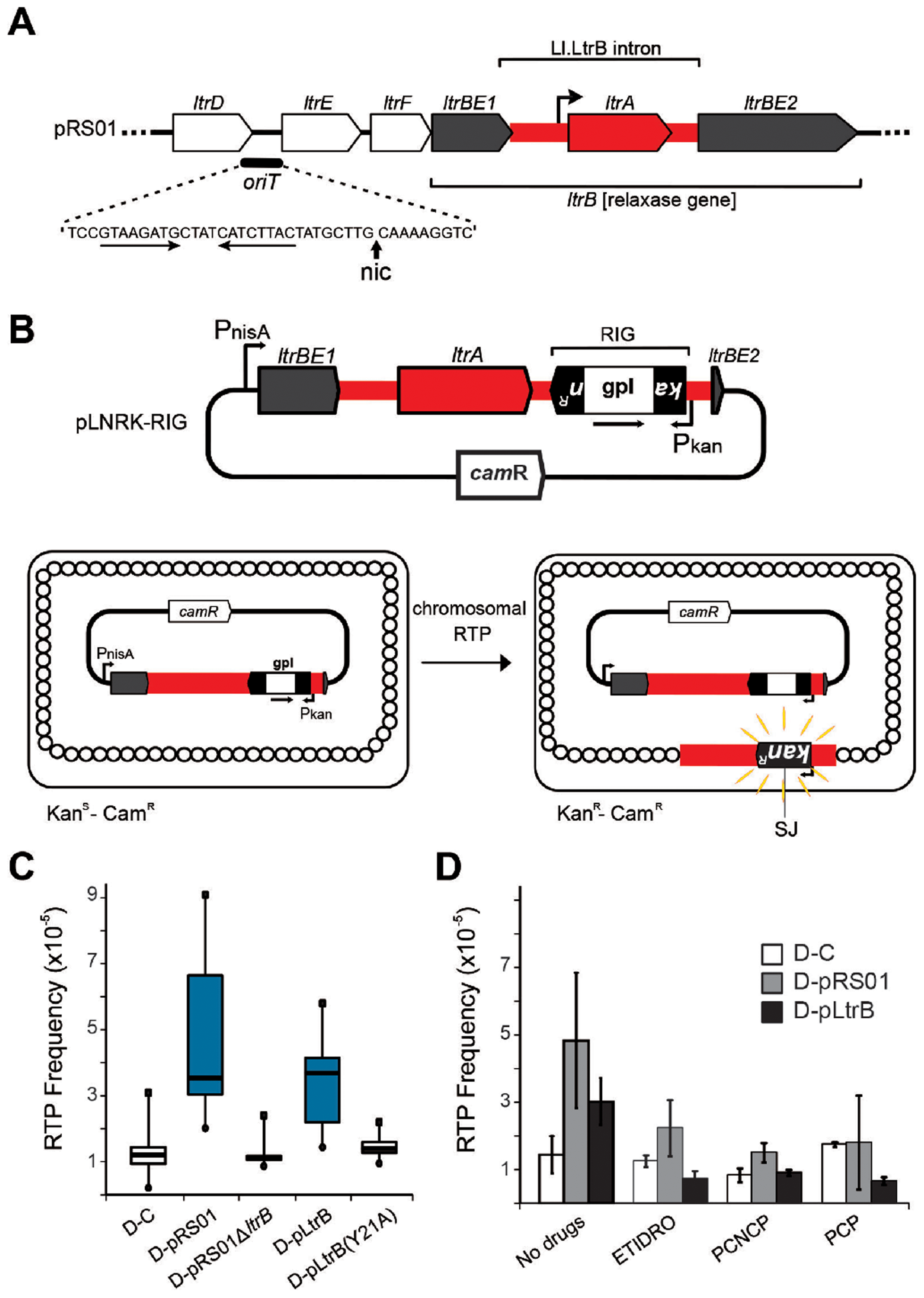 Relaxase-stimulated Ll.LtrB intron retrotransposition.