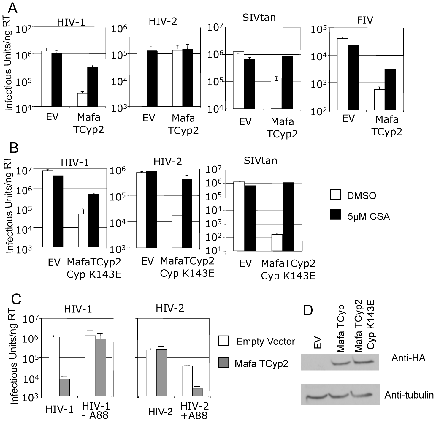 Restriction specificity of TRIMCyps against HIV-1, HIV-2 and FIV.
