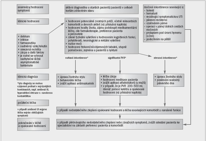 Schéma 5. Algoritmus pro řešení močové inkontinence u starších pacientů v celkově horším zdravotním stavu.