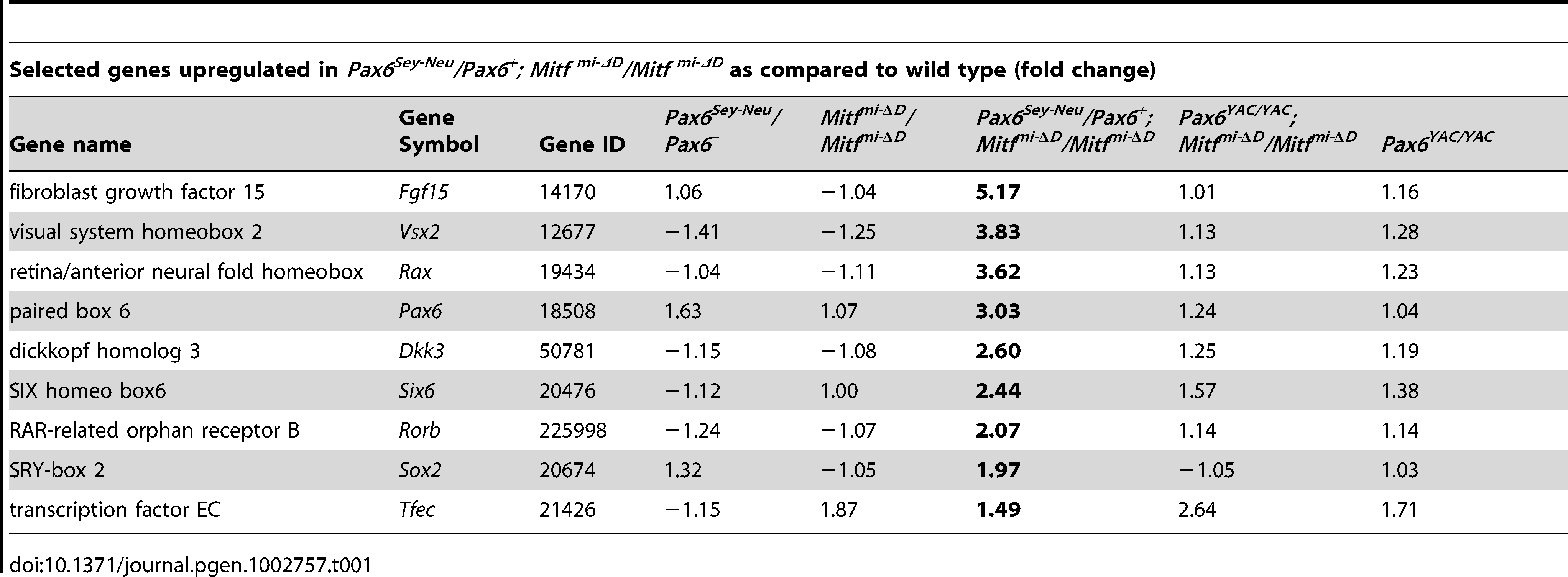 Gene expression profiling in mutant E11.5 RPE fractions.