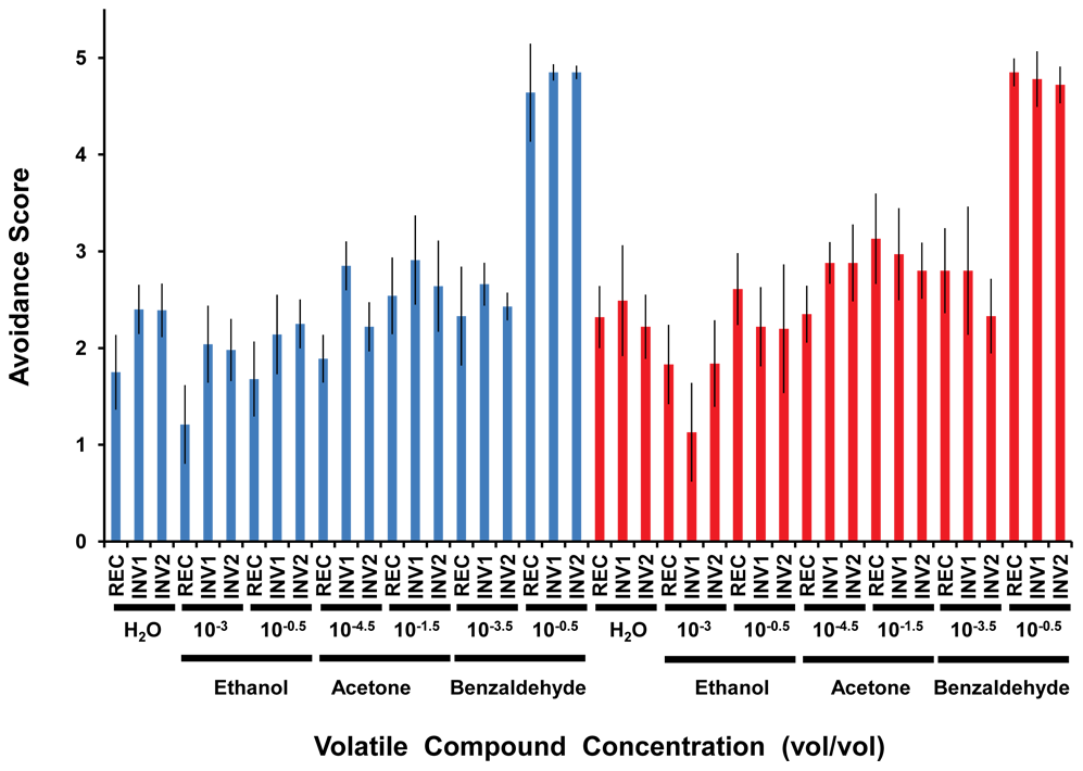 Olfactory response of strains with (INV1, INV2) and without (REC) the disrupted ultraconserved region <i>CG15121–CG16894</i> to three different volatile compounds.
