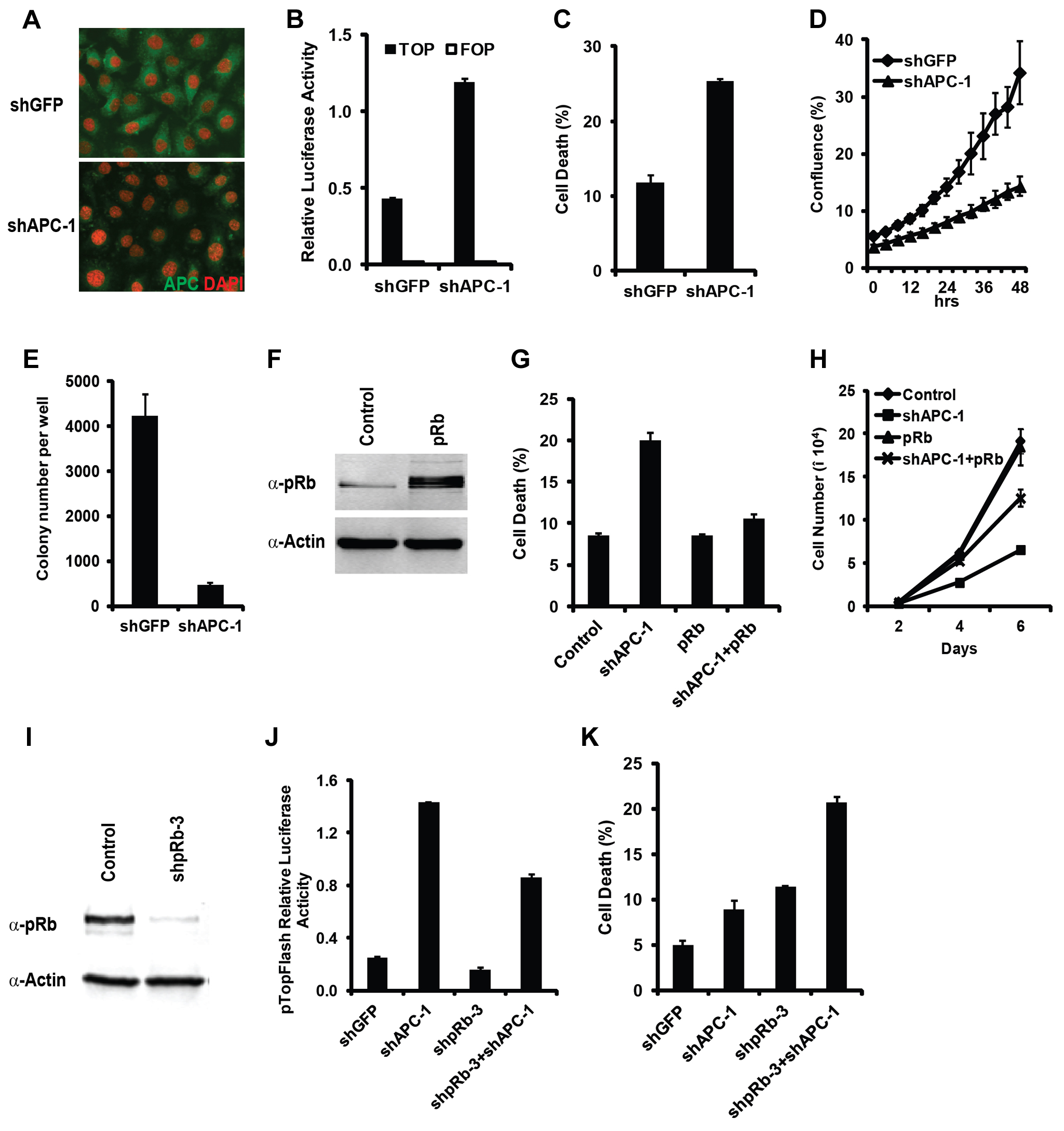 Hyperactivation of Wnt signaling and inactivation of Rb induced synergistic cell death effect in mammalian cells.
