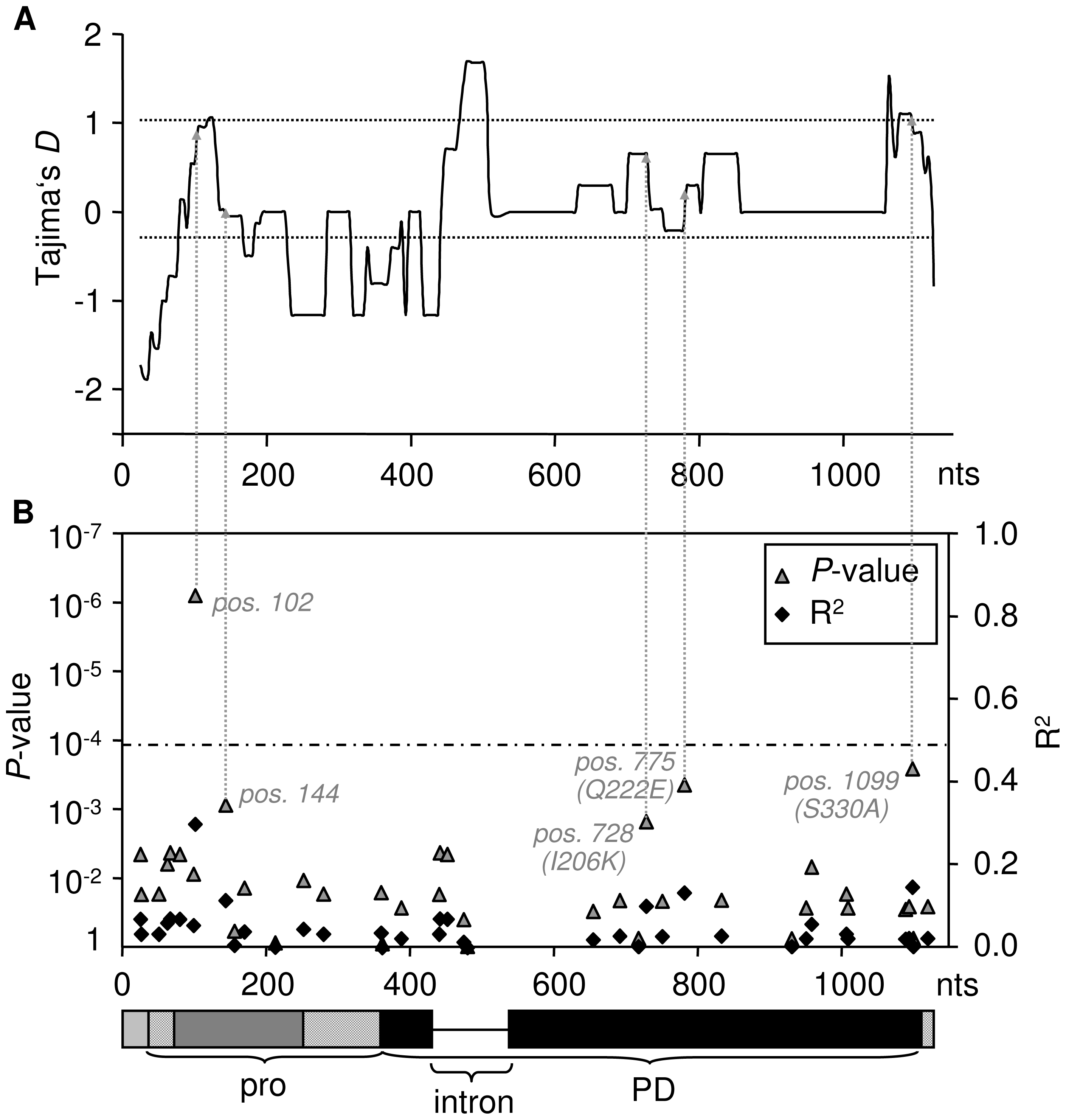 Association of the weak HR phenotype with sequence polymorphism.