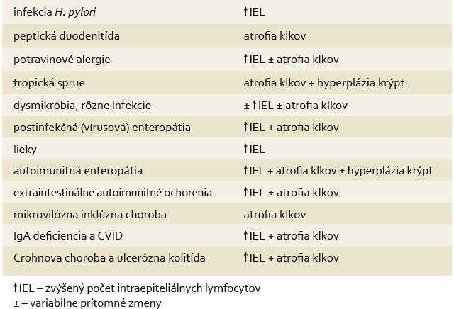 Histologická diferenciálna diagnostika céliakie. Tab. 3. Histological differential diagnostics of celiac disease.