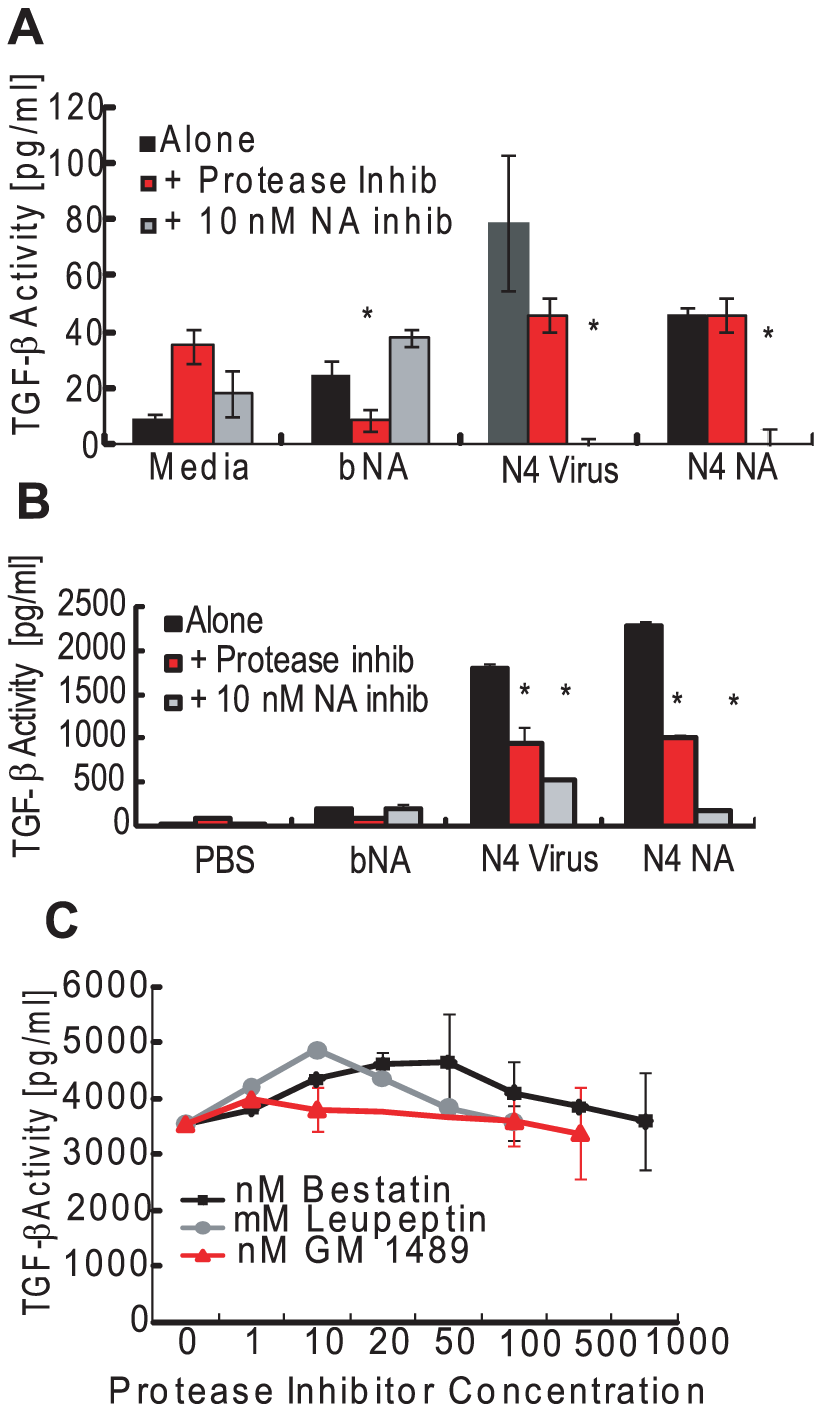 Role for NA activity and proteases in LTGF-β activation by influenza virus.