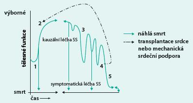 Komplexní léčba srdečního selhání (upraveno dle Goodlin SJ) [7]