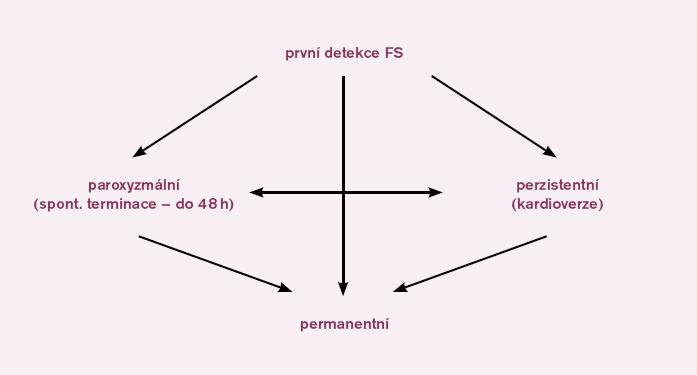 Klasifikace fibrilace síní. Na schématu je znázorněna klasifikace fibrilace síní a šipky ukazují možné konverze fibrilace síní do různých forem. Podle Heart Rhythm Society je permanentní forma fibrilace síní nově nazývána jako dlouhotrvající perzistentní fibrilace síní.