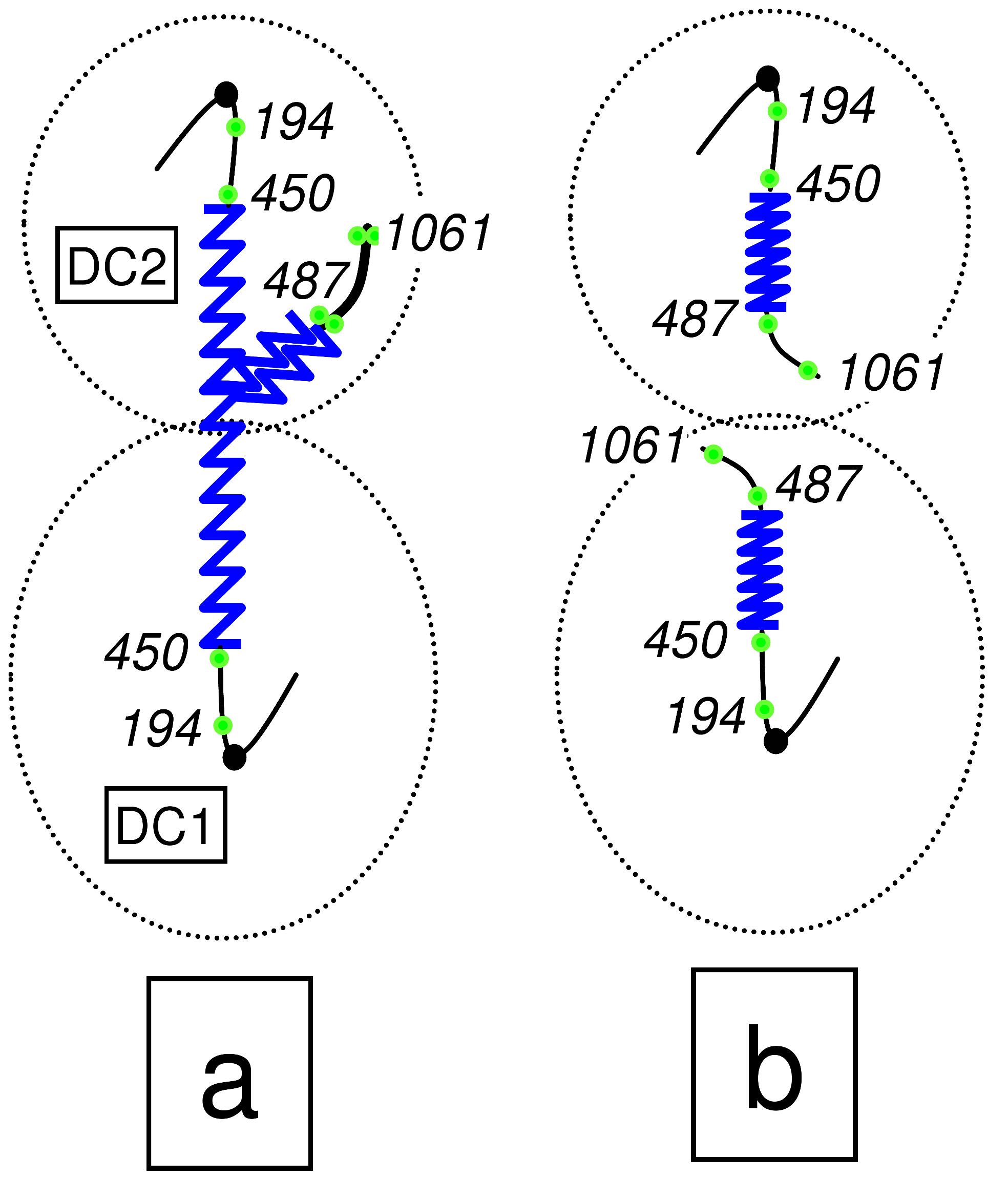 Scheme of the chromosome XII anaphase bridge (cXIIr) in a <i>cdc14-1</i> telophase block.