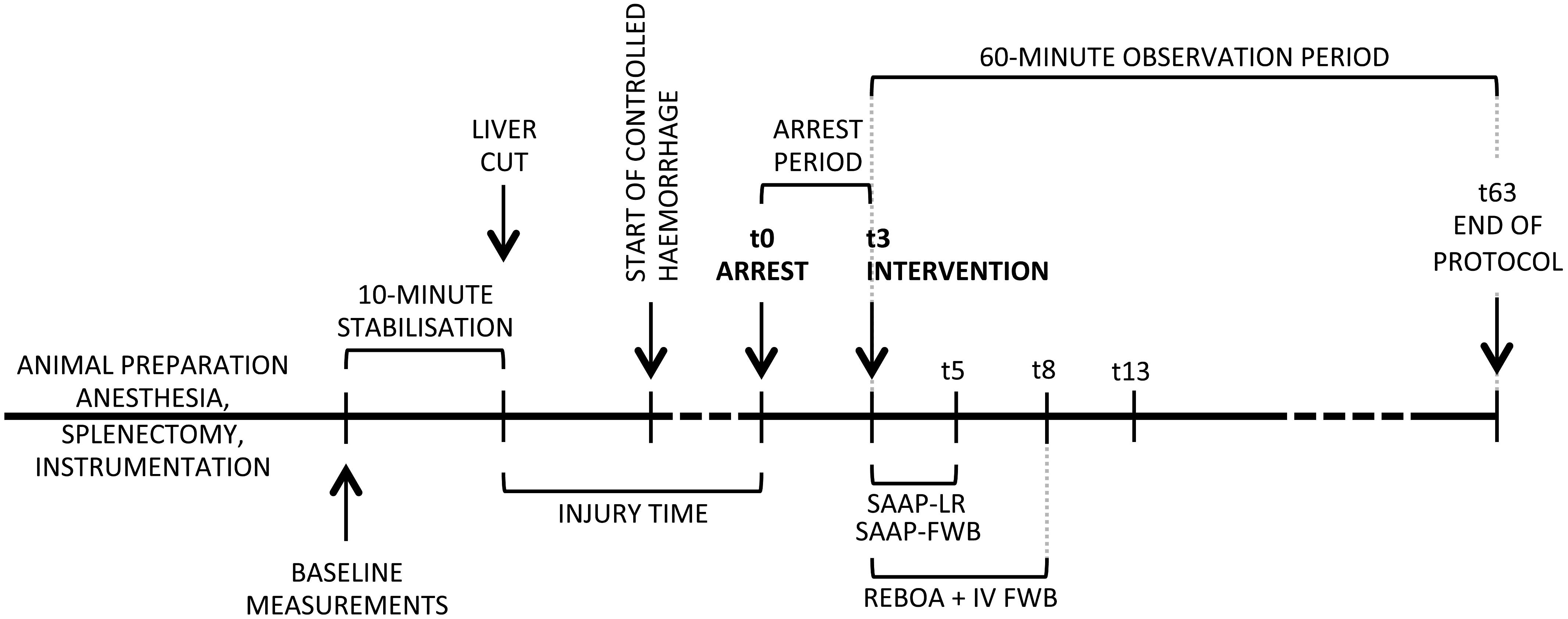 Protocol timeline.
