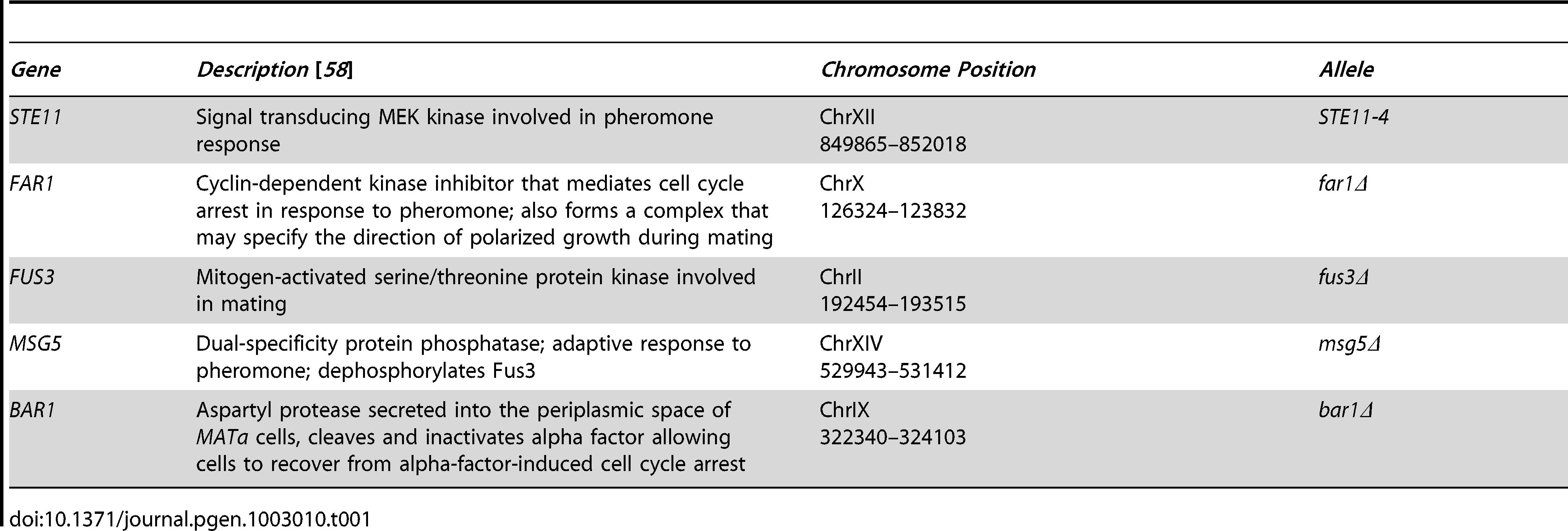 Genetic perturbations in this study.