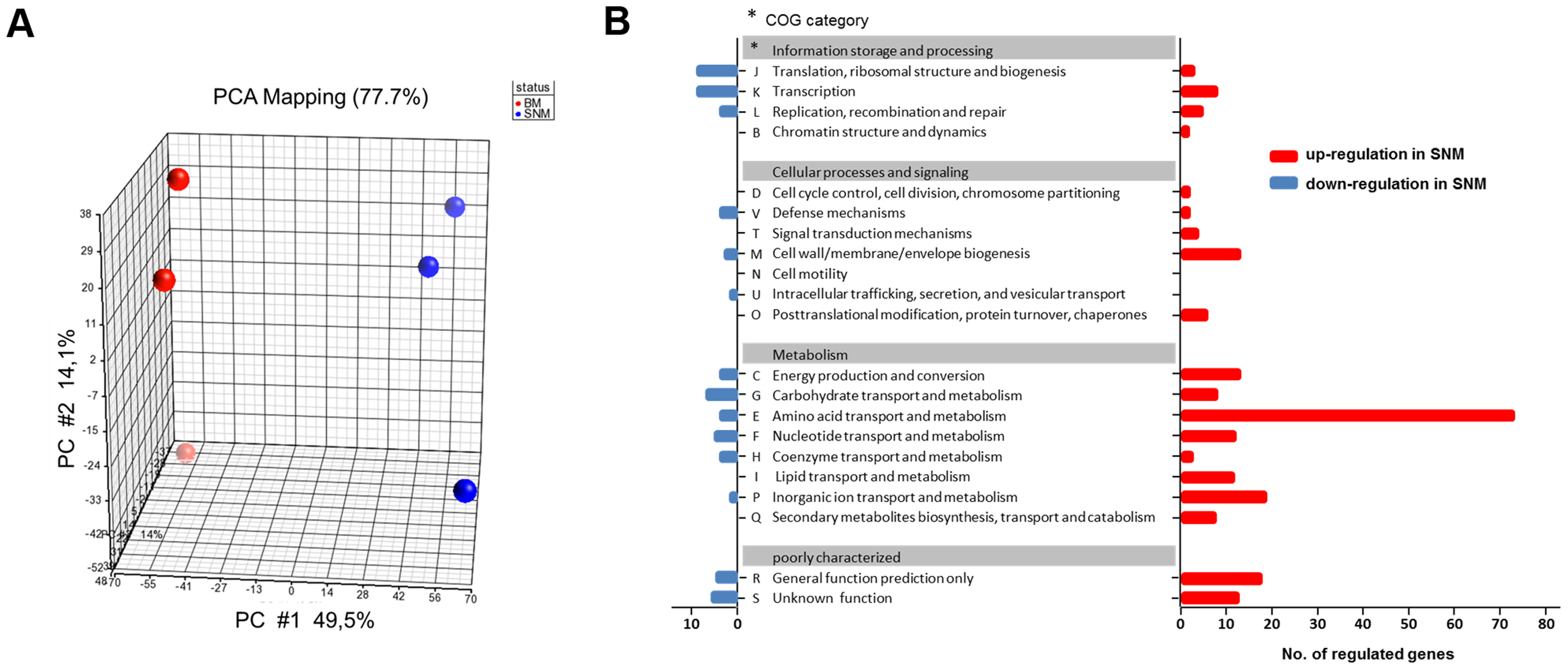 Differences in the transcriptome of <i>S. aureus</i> USA300 grown in SNM3 and complex medium (BM).