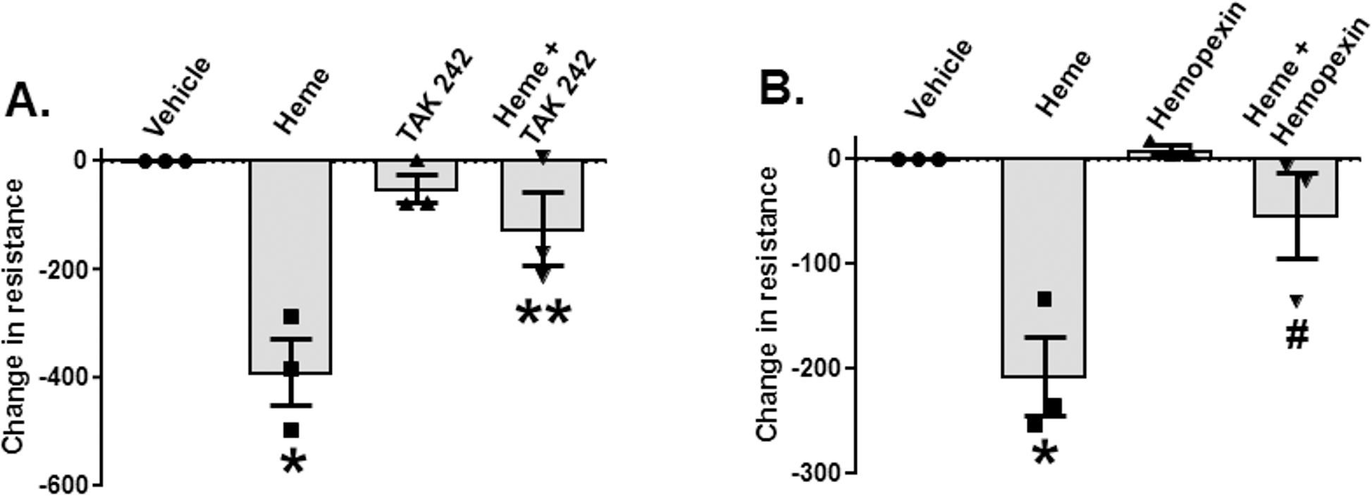 Heme-dependent decreases in endothelial barrier resistance are TLR4-dependent.