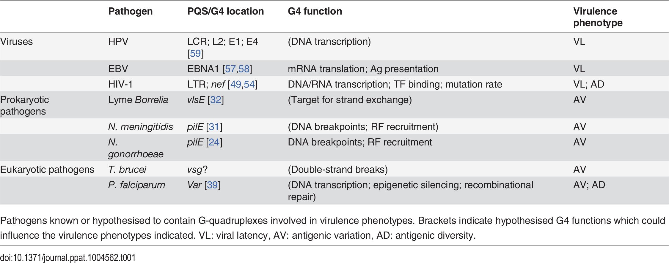 G-quadruplexes in pathogens.