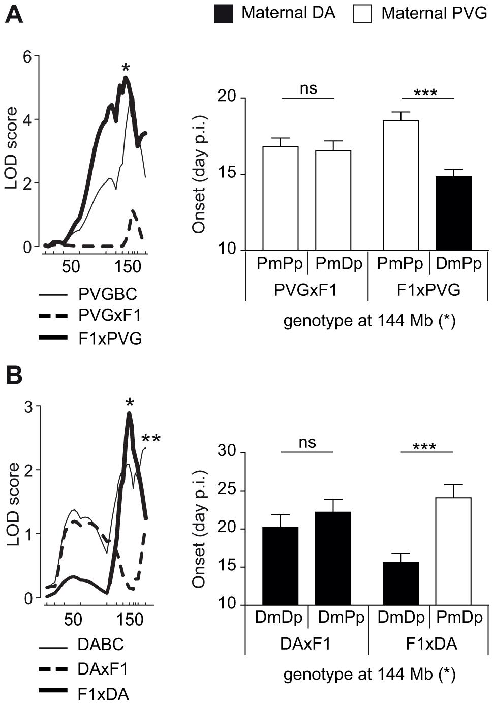 Maternal transmission of the disease-predisposing allele.