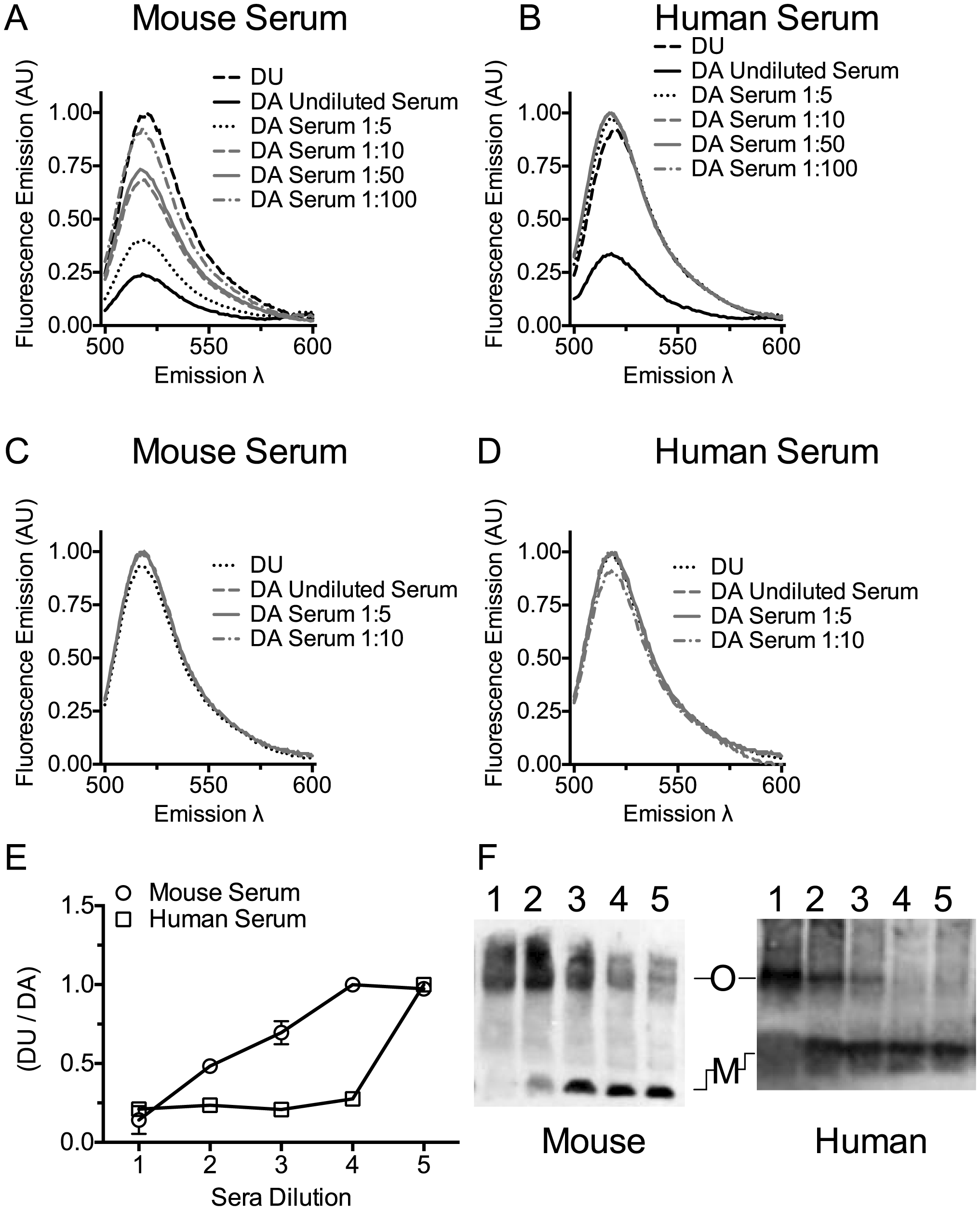 Serum stimulates PLY oligomer formation.