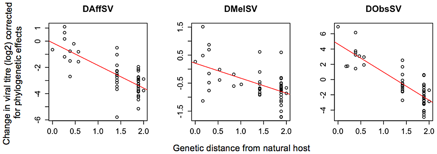The effect of the genetic distance of a novel host from the natural host on the titre of three sigma viruses 15 days after injection.