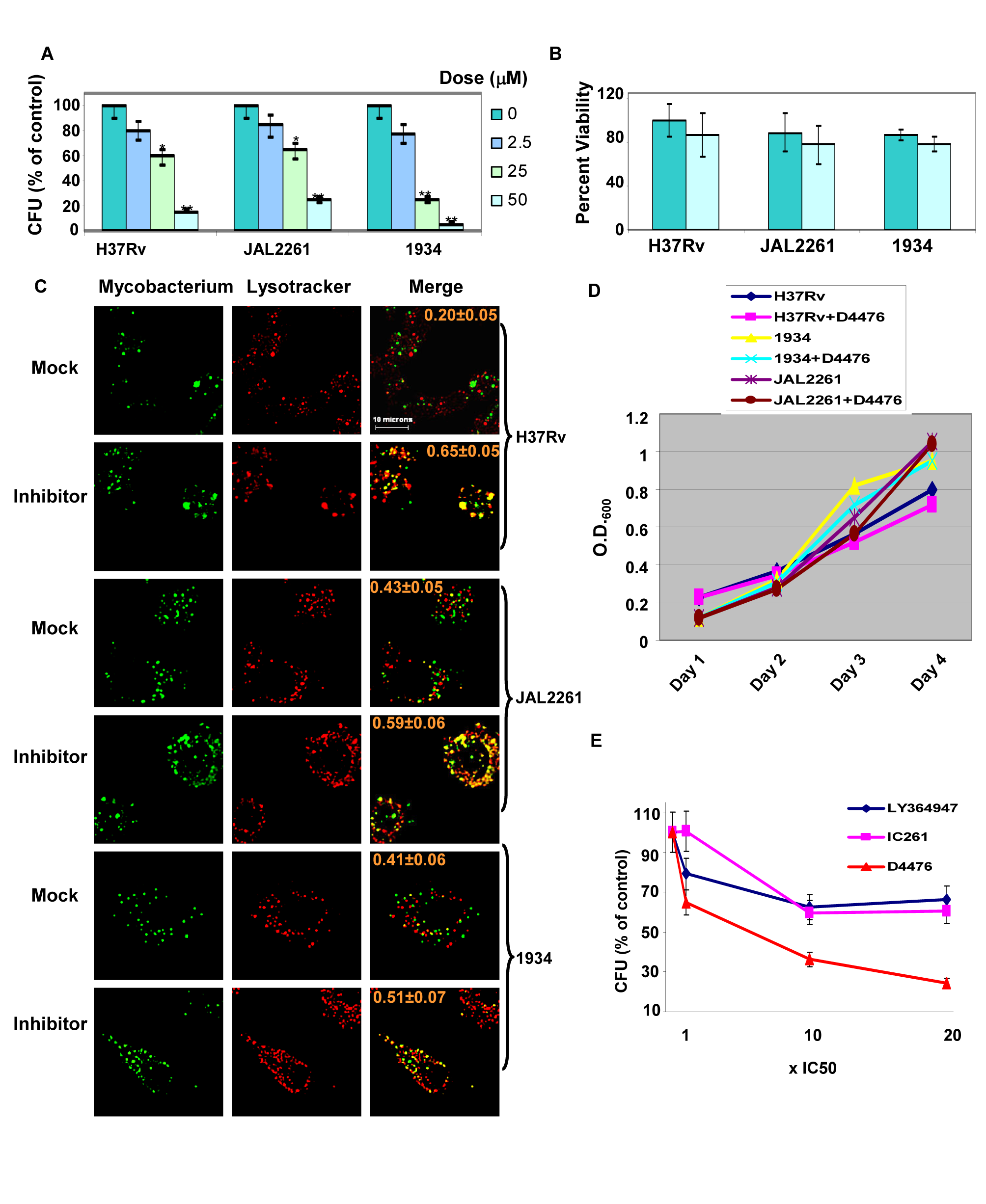 Dual inhibition of TGFβR1 and Casein kinase eliminates Mtb from infected cells.