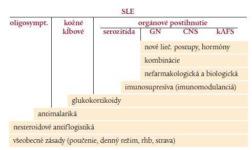 Schéma 3. Zásady liečby SLE.