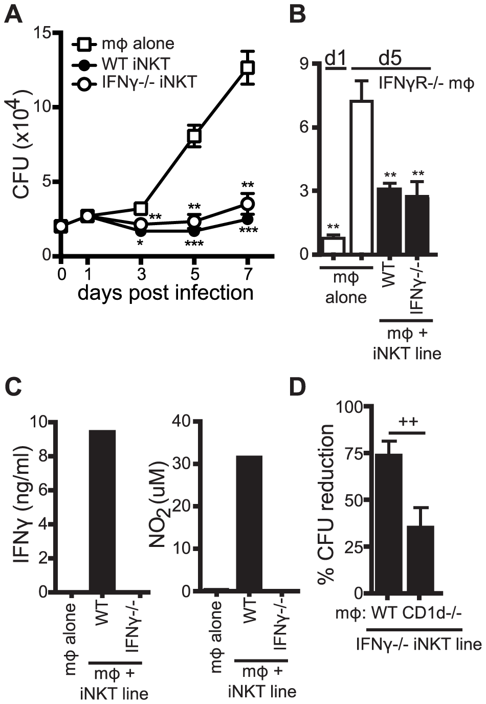 iNKT cell mediated control is independent of IFNγ.