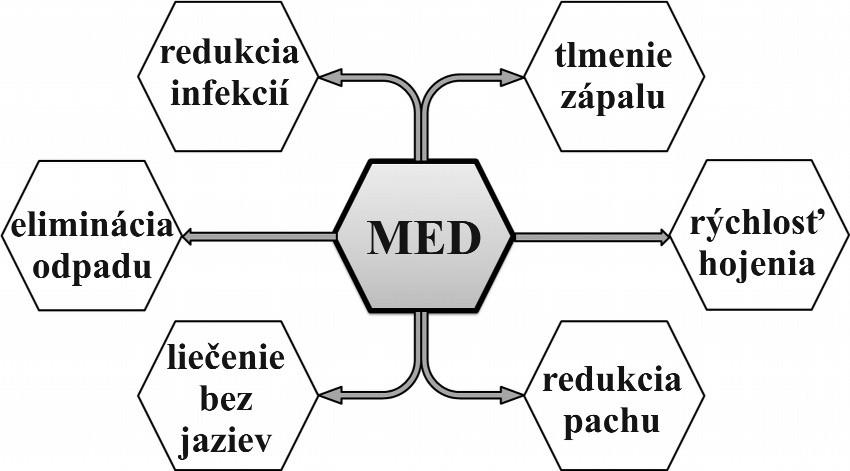 Schematické znázornenie účinkov medu pri liečení chronických rán Fig. 1. Diagrammatic representation of the effects of honey in the treatment of chronic wounds