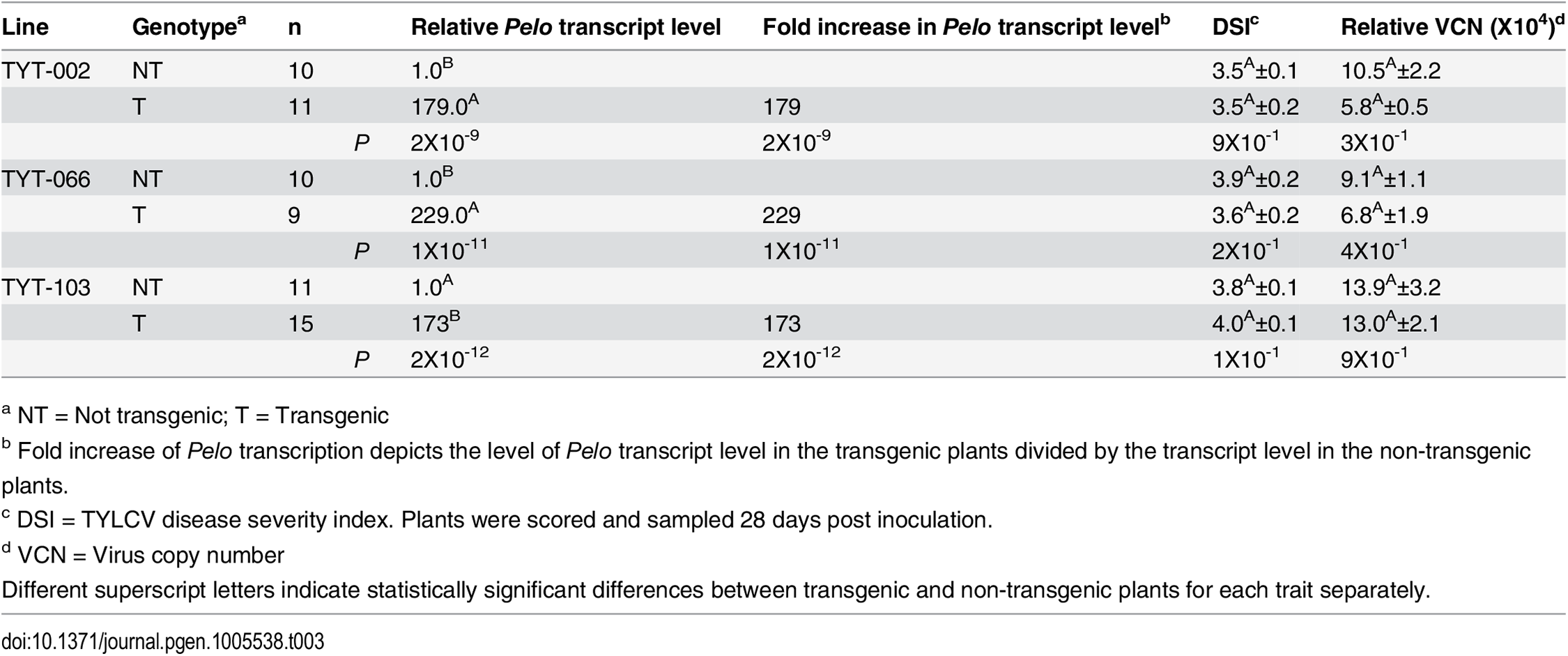 Effect of over-expressing the <i>Pelo</i> allele derived from TY172 plants in transgenic R13 plants.