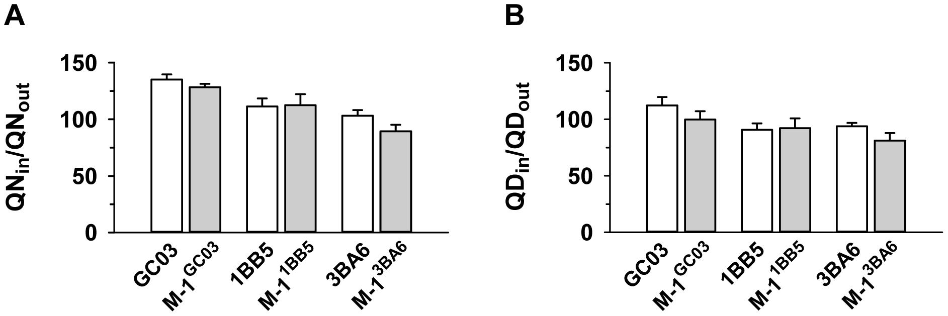 Effect of <i>pfnhe</i> on quinine and quinidine accumulation.