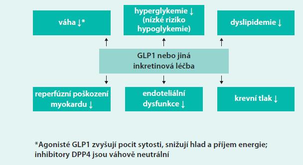 Schéma. Mechanizmy, které mohou vést k předpokládaným příznivým kardiovaskulárním účinkům inkretinové léčby diabetes mellitus (podle [9]).