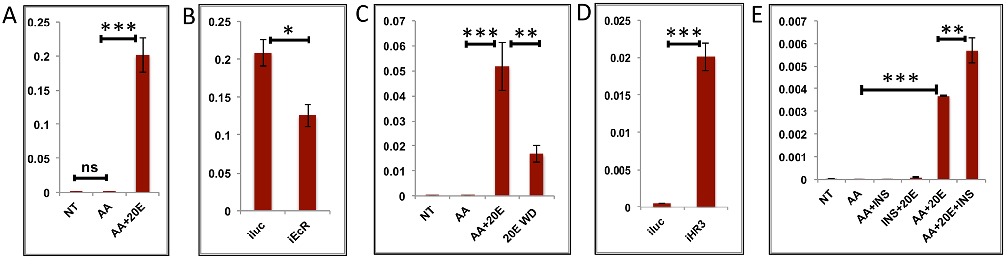Effects of AAs, 20E, insulin and HR3 on YPP genes.