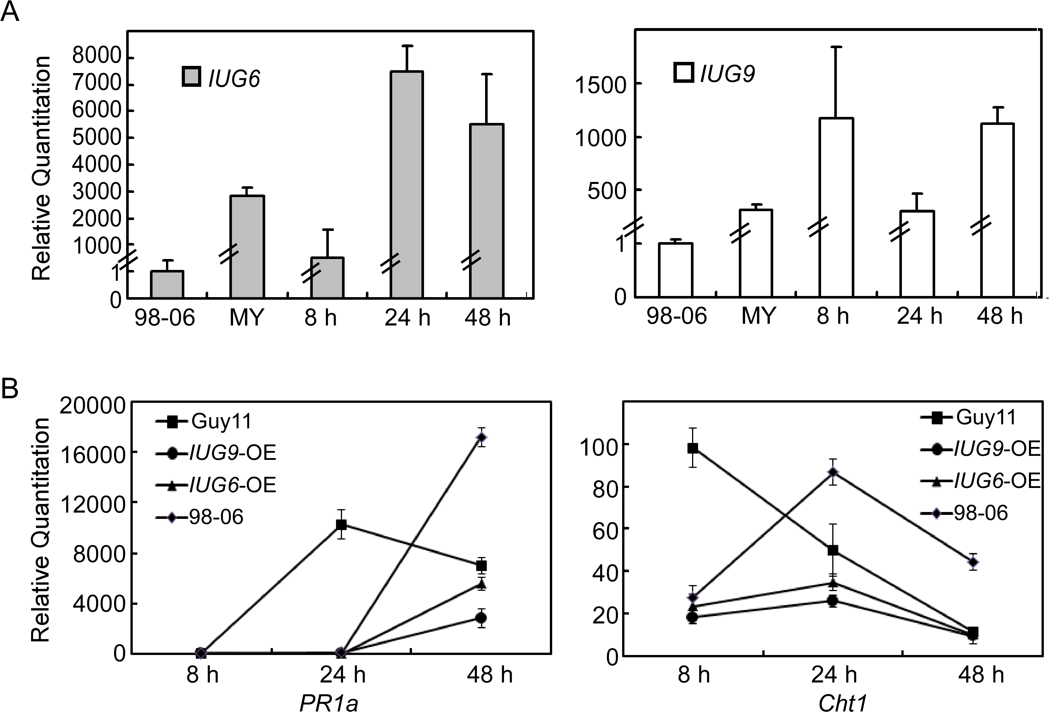 Over-expression of <i>IUG6</i> or <i>IUG9</i> in Guy11 suppresses defense-related genes in rice.