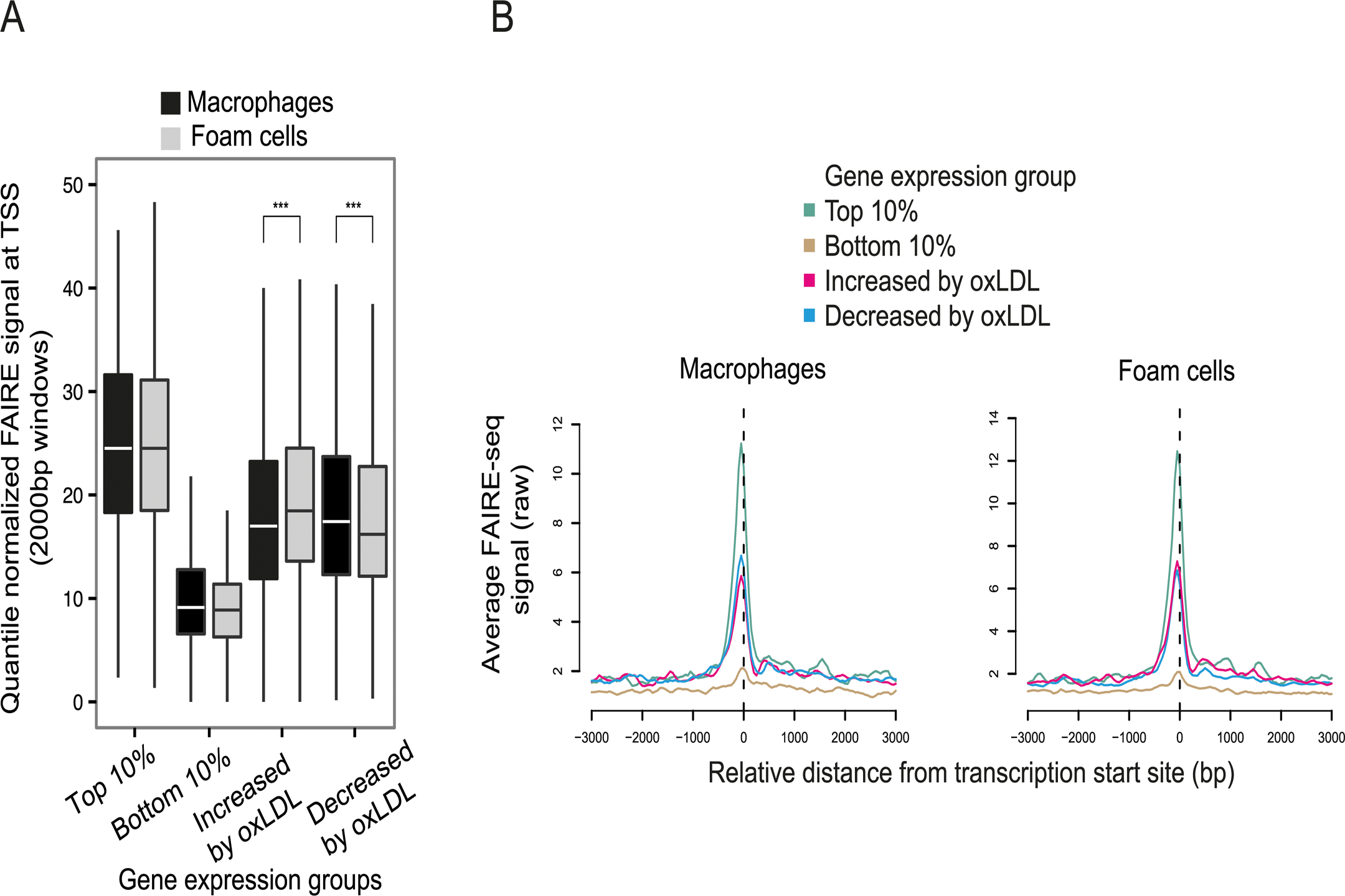 OxLDL-induced changes in chromatin structure determined by FAIRE-seq.