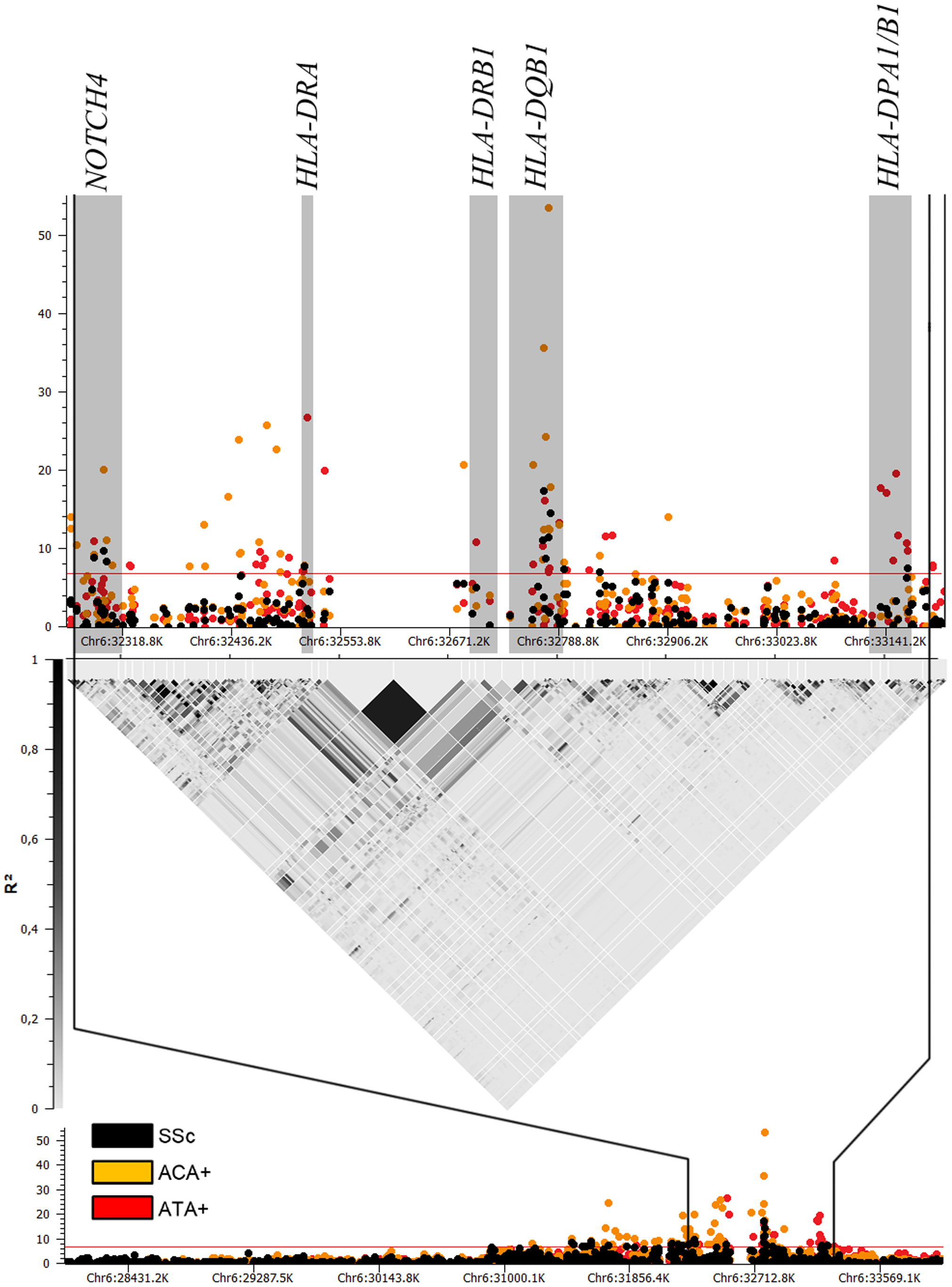Manhattan plot showing the -log10 of the Mantel-Haenszel <i>P</i> value of all 1,112 SNPs in HLA region for the GWAS cohorts comprising 2,296 cases and 5,171 controls.
