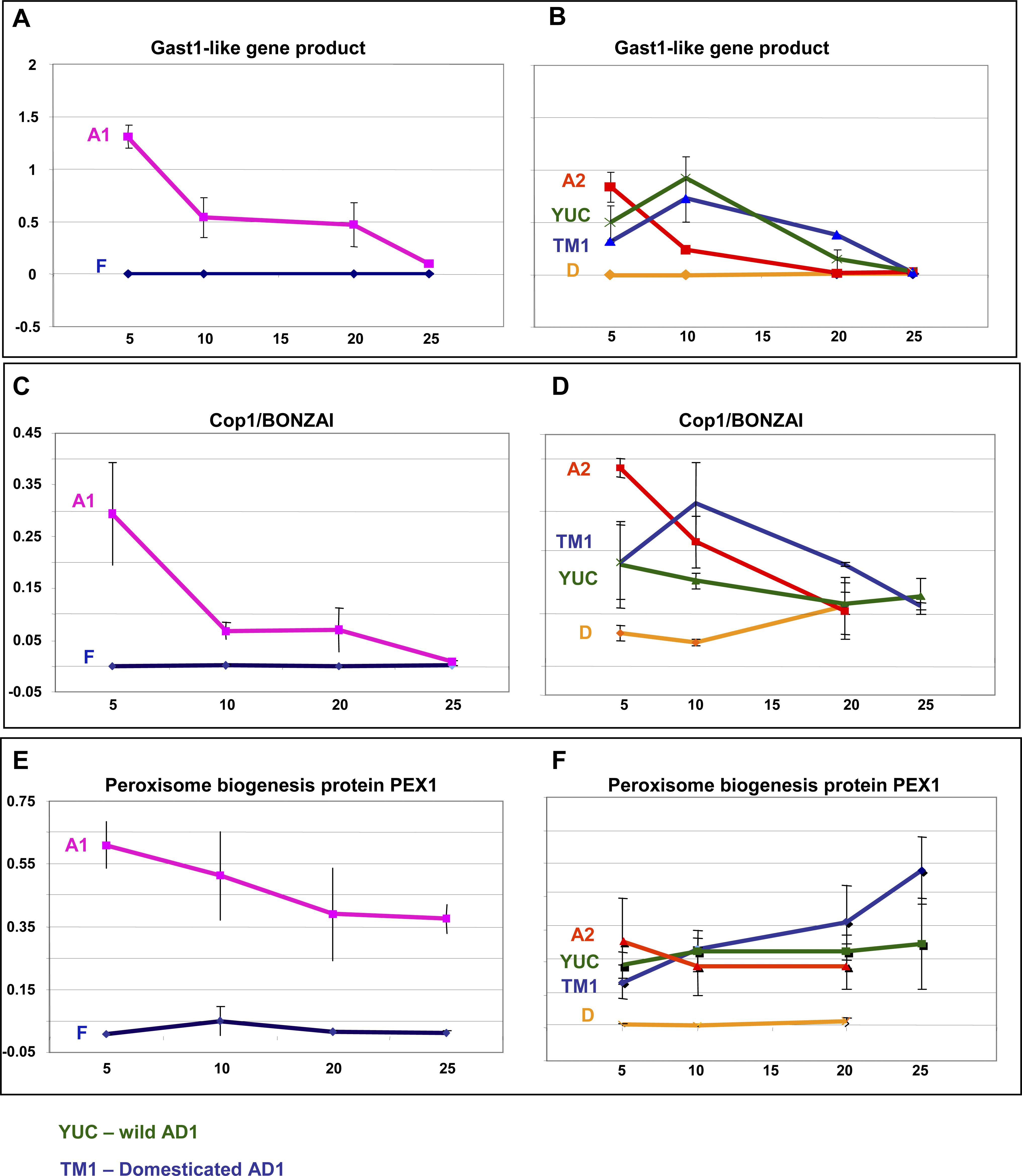 Quantitative Real-Time PCR Analyses of Three Candidate Genes Controlling H<sub>2</sub>O<sub>2</sub> Levels