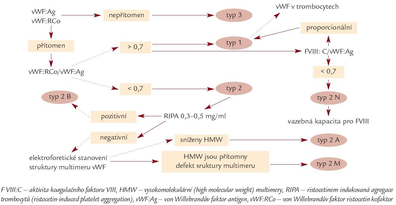 Schéma. Zjednodušený diagnostický algoritmus von Willebrandovy choroby, upraveno dle [23,24].