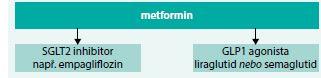 Schéma 2. Výběr antidiabetik