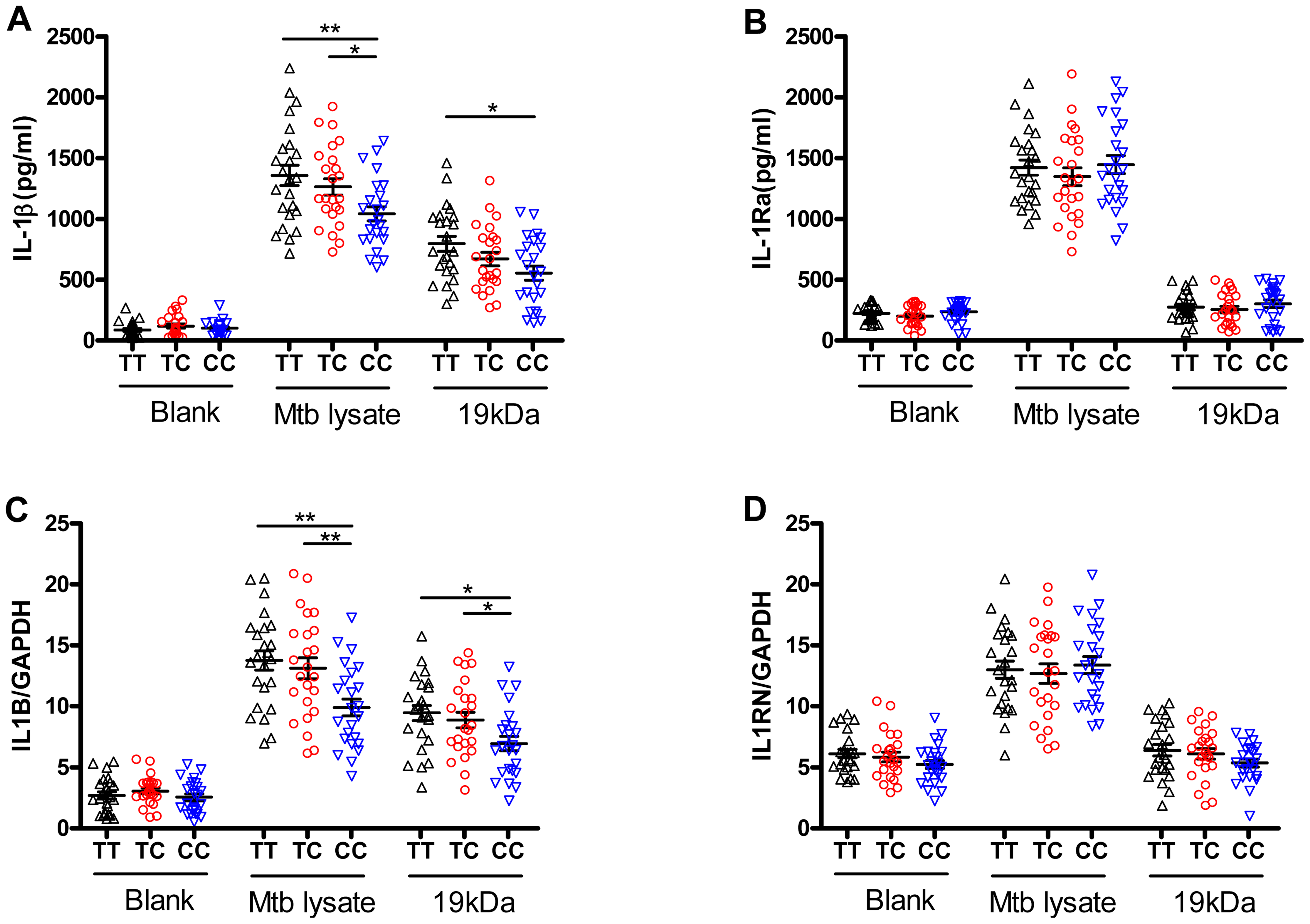 The rs1143627 polymorphism affects IL-1β production by monocytes upon Mtb stimulation.